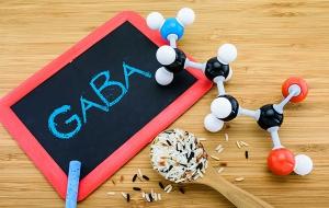 GABA molecule