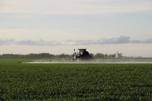 Tractor spraying Roundup